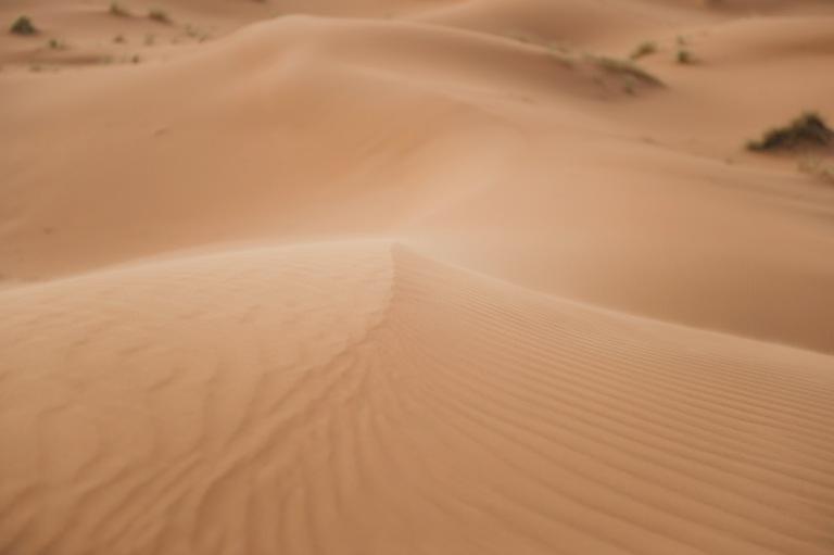 Sahara Desert by Etjourn