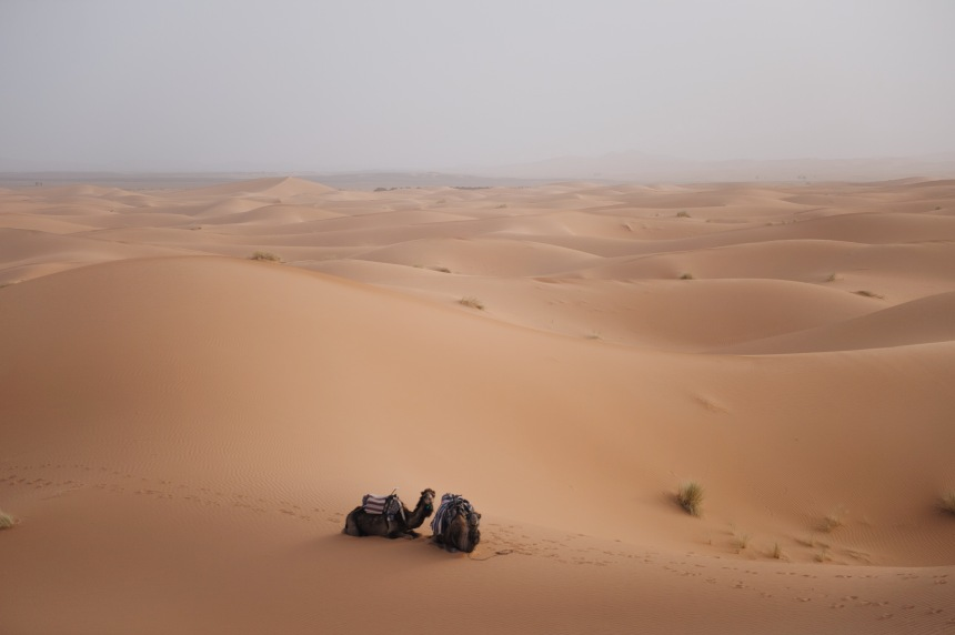 The Sahara Desert by Etjourn